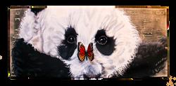 PandaButterfly