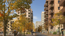 Gascoigne East & Gascoigne West Regeneration Projects