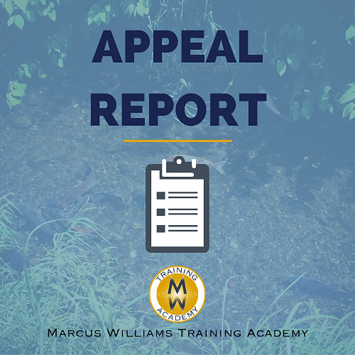 Appeal Report Template