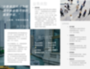 Trifold Brochure (Chinese)_Page_2.png