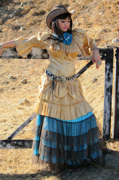 Cowgirl dress and Rodeo Cinderella skirt
