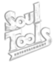 SOUL TOOLS SPRAY PAINT LOGO WHITE.png