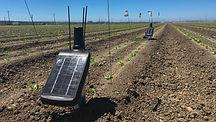 Monitoring Soil.jpg