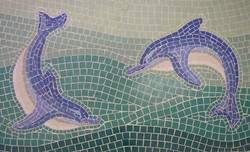 Dolphin panel close up