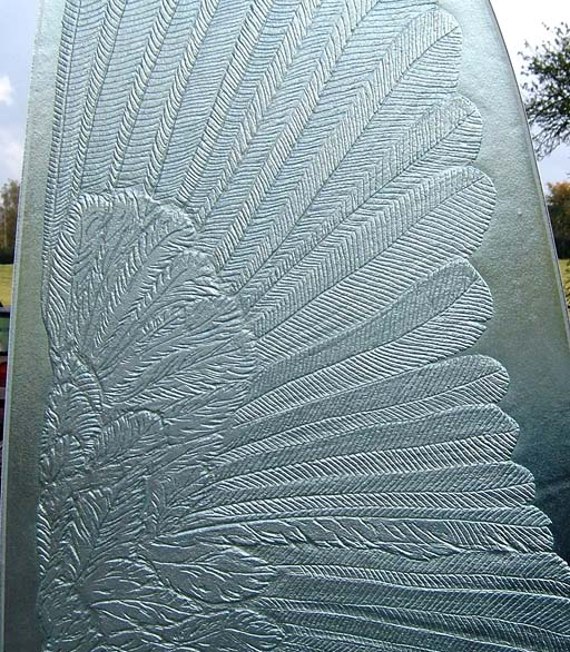 Close up of owl wing feathers