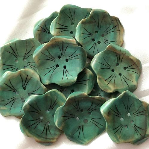Boutons petites fleurs vertes