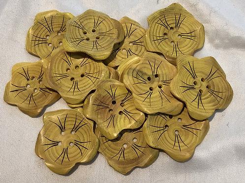 Boutons fleurs jaune