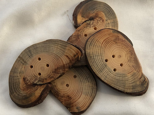 Boutons coquillage en pin