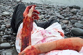 bleeds-0220349_edited.jpg
