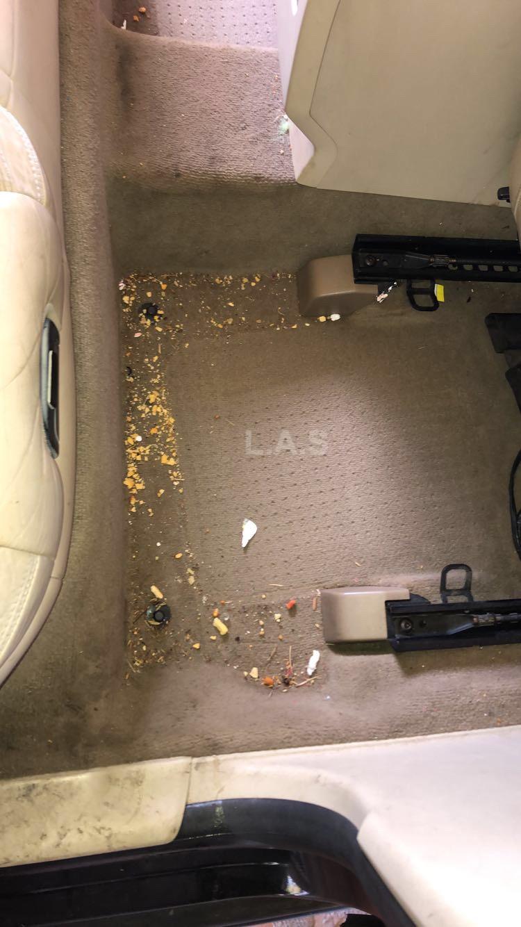 Passenger Floor