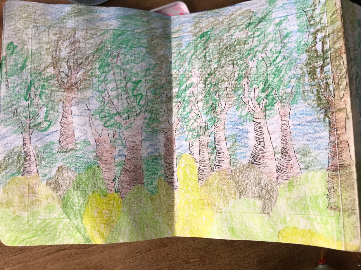 The Sketchbook project, p.6a, 2020-2021
