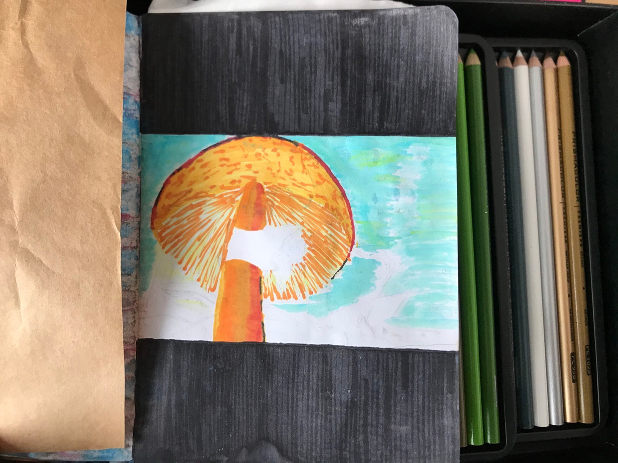 The Sketchbook project, p.5, 2020-2021