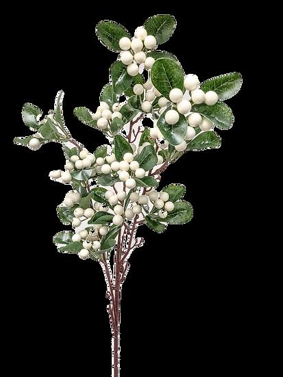 White Berry & Foliage Bush