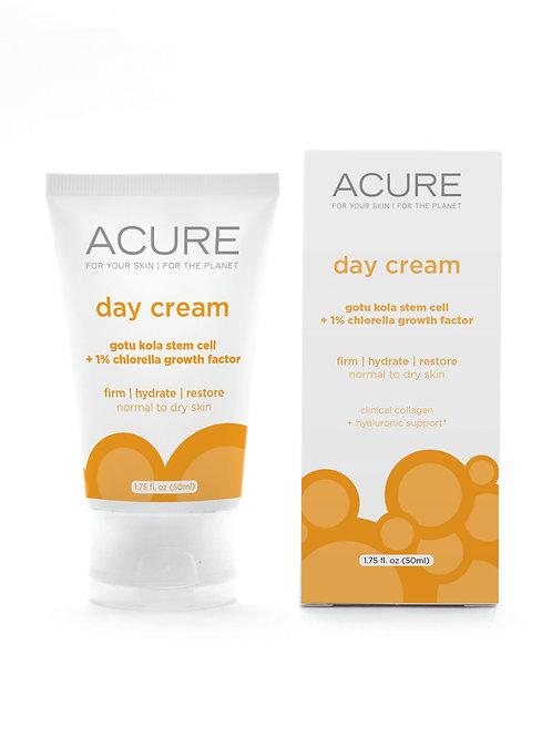 Acure Day Cream