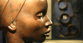 HOW BREEDING CHANGED THE DNA OF AFRICAN AMERICANS