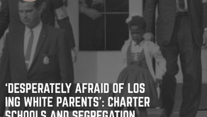 'Desperately afraid of losing white parents': charter schools and segregation