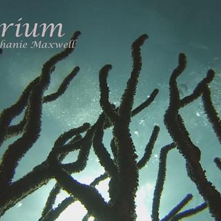 Aquarium Poster.jpg