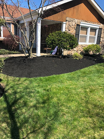 Mulch and plants.
