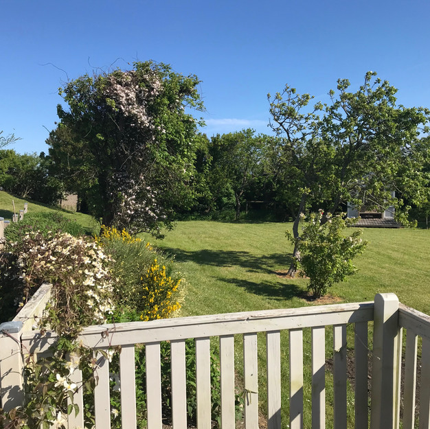 Blick vom der Saunahausterrasse in den Garten