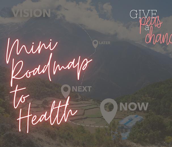 Mini-RoadMap to Health