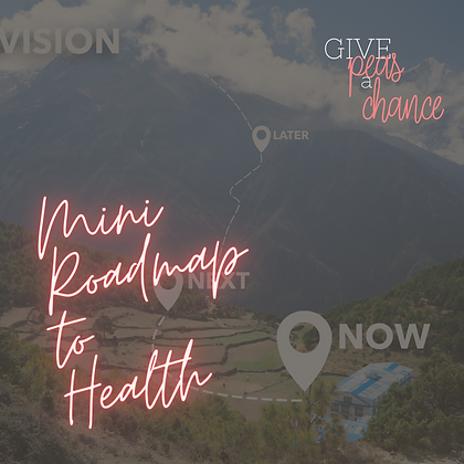 Mini-Road Map to Health
