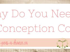 Why Do You Need A PreConception Coach?