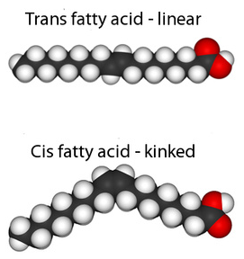 CIS versus TRANS fatty acids