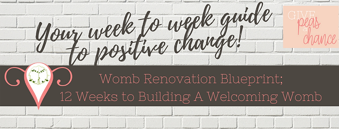 12 Week Womb Renovation Blueprint.png