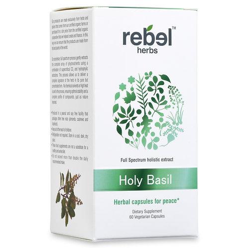 holy basil immune system holy basil cortisol holy basil tea holy basil capsules