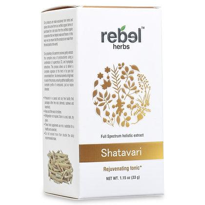 Shatavari Dual Extracted Powder