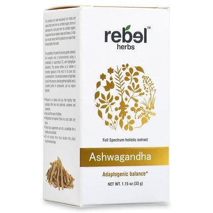 Ashwagandha Dual Extracted Powder