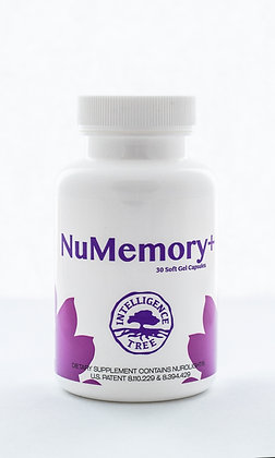 NuMemory+