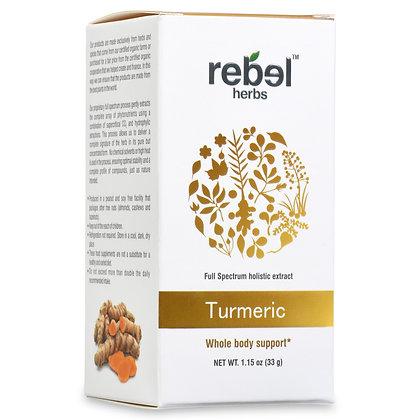 Turmeric Dual Extracted Powder