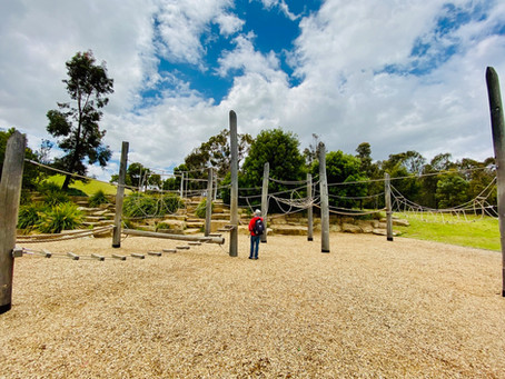Greener and denser cities - The Australian School of Urban Forestry, Part II