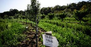 L'agroécologie : un nouveau souffle pour l'agriculture française !