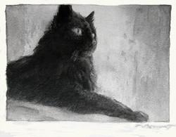 La petite chatte noire, 6x8