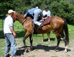 fun on horseback