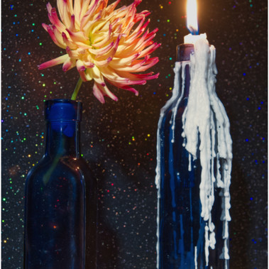 Chrysanthemum With Bluebottles by Gordon Stewart