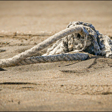 Washed Ashore by J.McMillan
