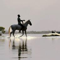 Horse Latitudes by Alan Millar