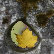 Of Grave Concern by Alan Millar