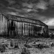 Lonely Barn by Jim Shaw