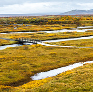 Icelandic Path by Barry Wright