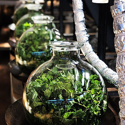 Fresh Herb Distillation