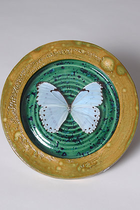 Butterfly in pottery frame