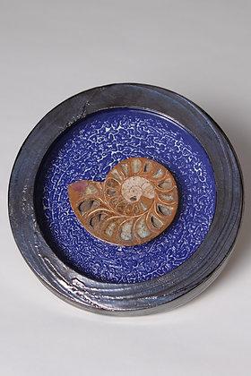 Ammonite framed in pottery