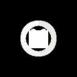 icon 2 mapa white.png