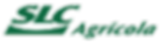 Logo Verde Wpp.png