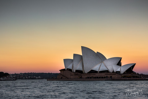 Sunset Sails.jpg