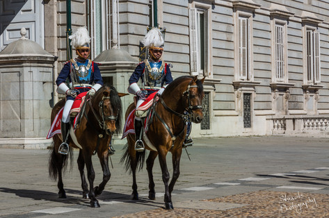 Changing of the guard Madrid